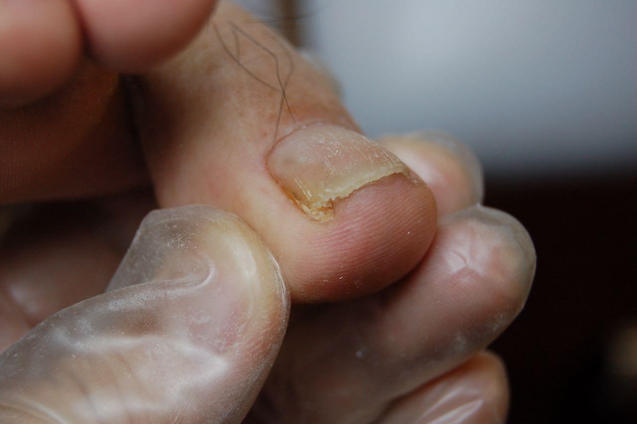 切り 店 爪 専門